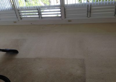 Carpet Cleaning of a House