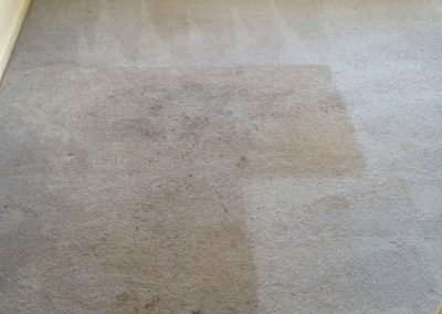 Carpet Cleaning Honolulu 6
